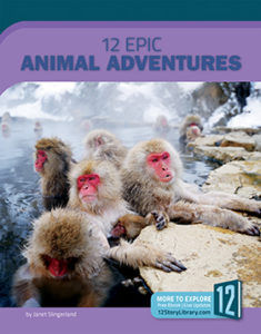 Book cover for 12 Epic Animal Adventures